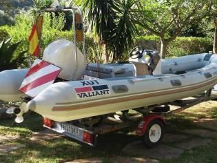 Valiant V-490