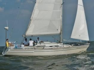 Dehler Yachtbau Dehler 36 Db