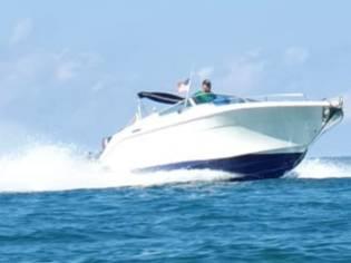 Cruisers 292