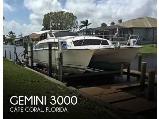 Gemini 3000