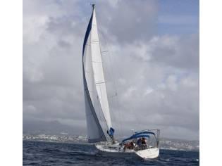Gib' Sea 414