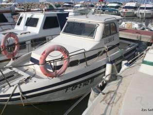 Rio 800 Fish