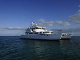 Custom Advance Marine Catamaran