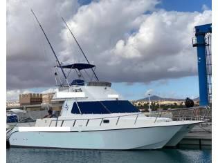 Cata 356 Sportfisherman
