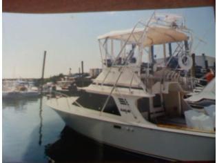 Blackfin 29 Flybridge Convertible
