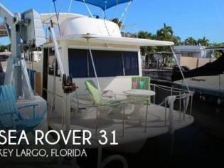 Sea Rover 31