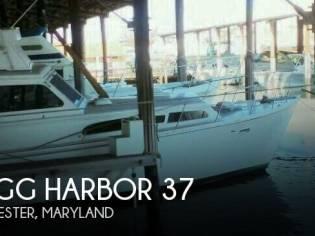 Egg Harbor 37