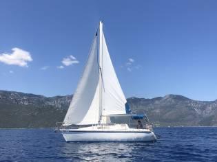 Gib Sea 29