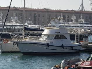 Calauria 35
