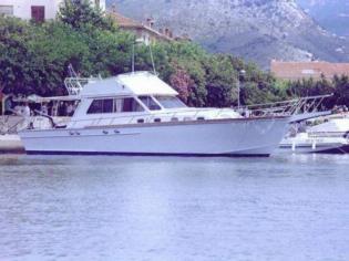 ALALUNGA S. Margh. Alalunga 15 Fish