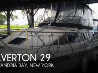 Silverton 29