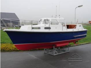 Sea Angler 31
