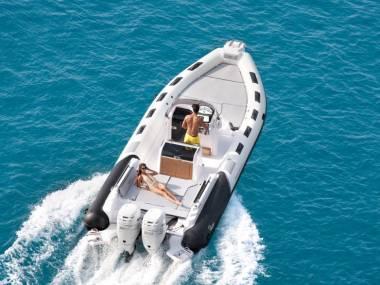 Ranieri Cayman 31