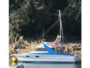 Riva Pesca 34