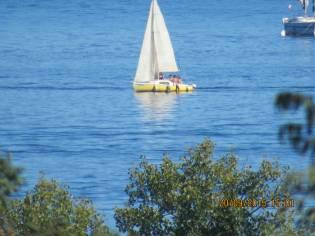 barca a vela 6 mt