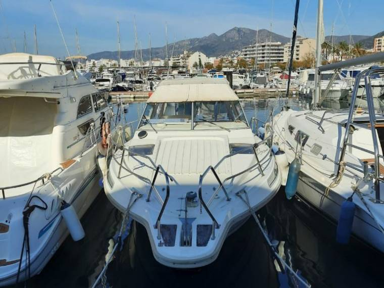 Barco  Modelo 900 Dolphin