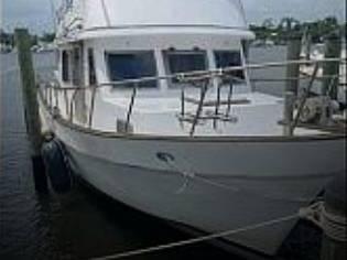 CYM 36