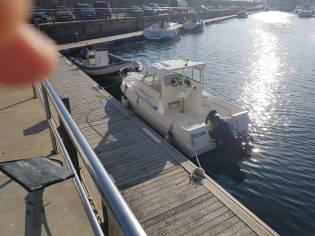 Felco Delfin 595