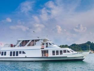 Custom Cruise Ship (Harbour Queen)