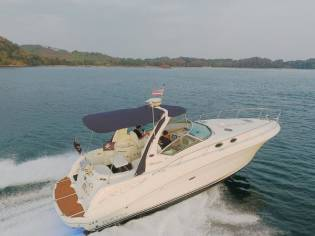 Sea Ray sundancer 375