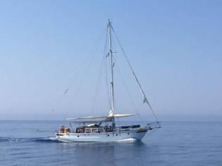 Sino American Yacht 39