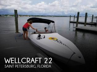 Wellcraft 22 Scarab