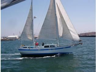Island Trader Freeport 41