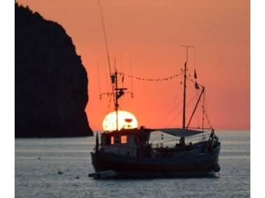 mallorca-naval-vendebarcos-48648120161370565057704968484566.jpg Fotos 7
