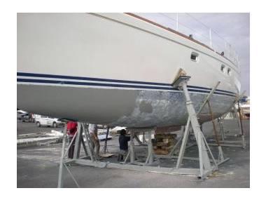 oceancat-42134040170451565355695168674570.jpg Fotos 0