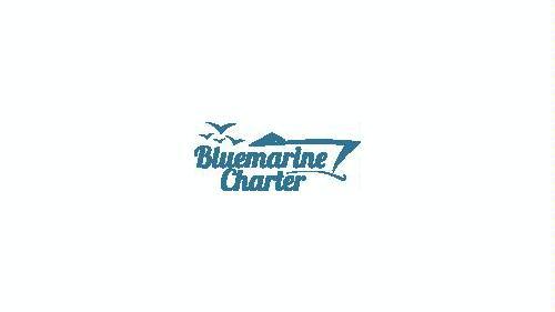 Logomarca de Bluemarine Yacht Charter Ibiza