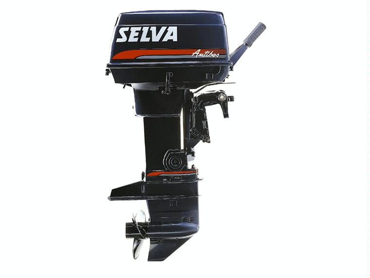motor-selva-30-cv-c-larga-48245120071153