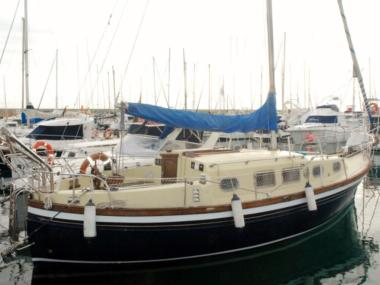 Myabca delfín 31